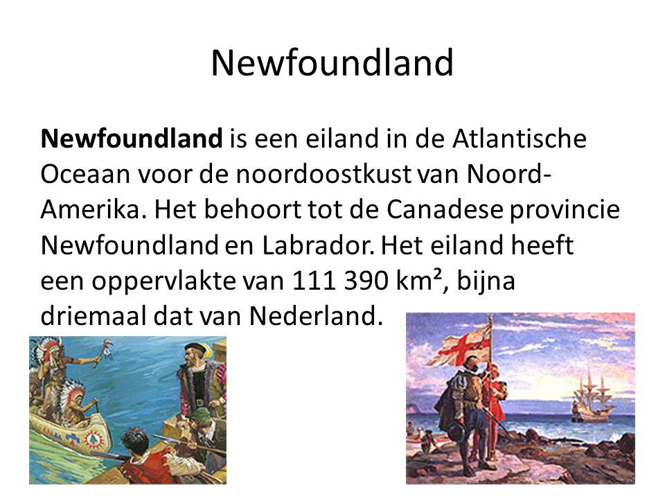 Newfoundland Newfoundland is een eiland in de Atlantische Oceaan voor de noordoostkust van Noord- Amerika. Het behoort tot de Canadese provincie Newfo
