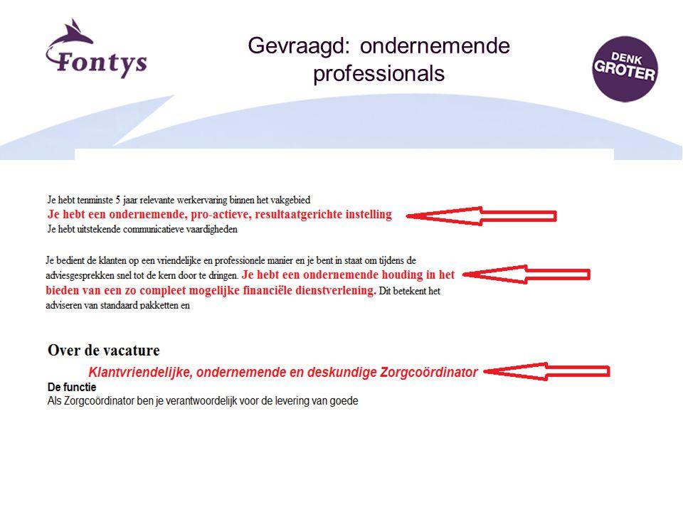 Centrum voor Ondernemerschap12 Gevraagd: ondernemende professionals