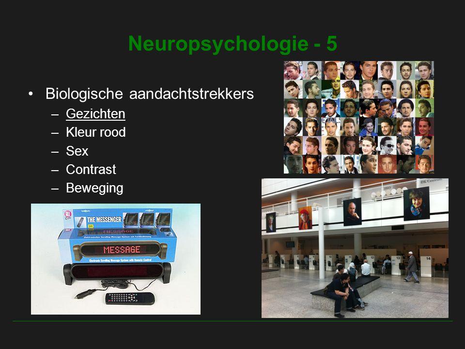 Neuropsychologie - 5 Biologische aandachtstrekkers –Gezichten –Kleur rood –Sex –Contrast –Beweging