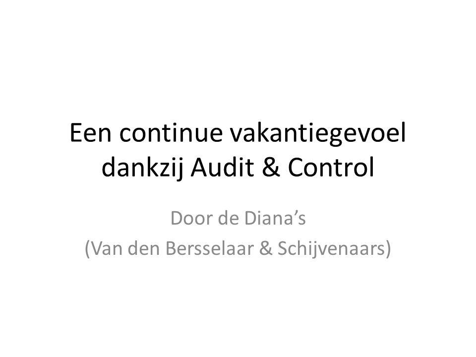 Een continue vakantiegevoel dankzij Audit & Control Door de Diana's (Van den Bersselaar & Schijvenaars)