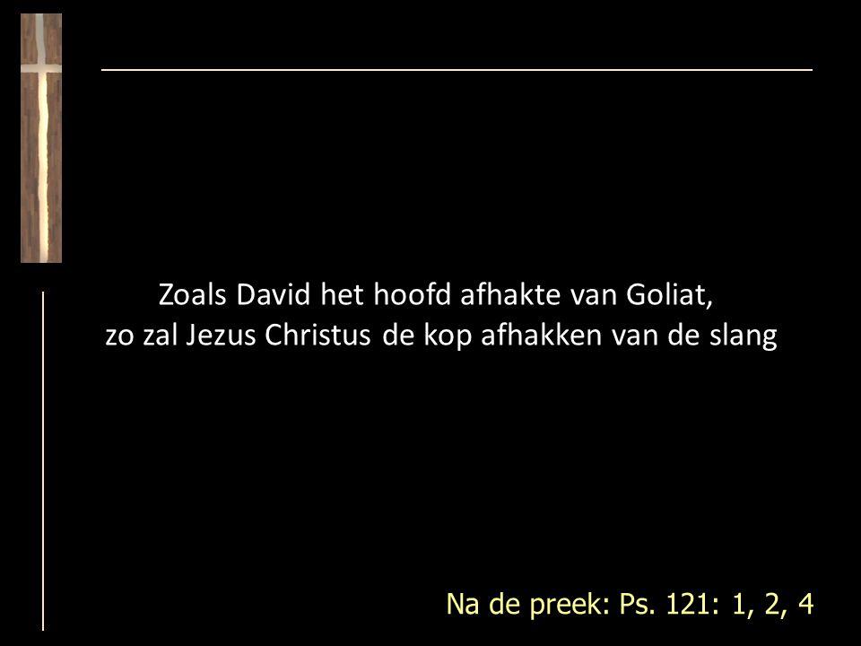 Zoals David het hoofd afhakte van Goliat, zo zal Jezus Christus de kop afhakken van de slang Na de preek: Ps.