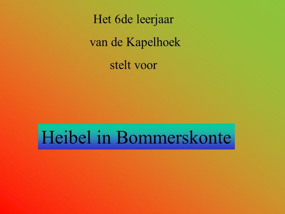 Het 6de leerjaar van de Kapelhoek stelt voor Heibel in Bommerskonte