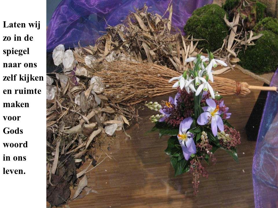 De amaryllis groeit door. Maak schoon- schip en schep ruimte voor de groei- kracht in jezelf.
