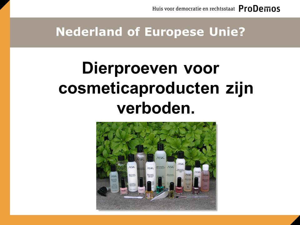 Dierproeven voor cosmeticaproducten zijn verboden. Nederland of Europese Unie?