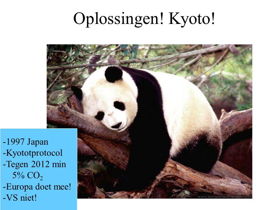 Oplossingen! Kyoto! -1997 Japan -Kyototprotocol -Tegen 2012 min 5% CO 2 -Europa doet mee! -VS niet!