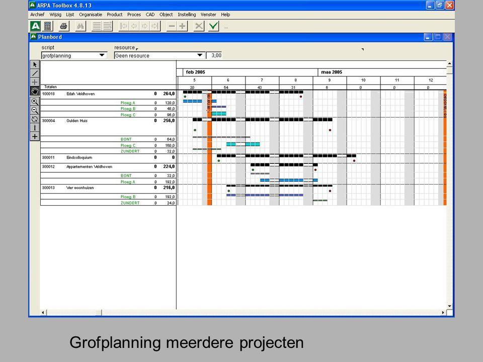 Grofplanning meerdere projecten