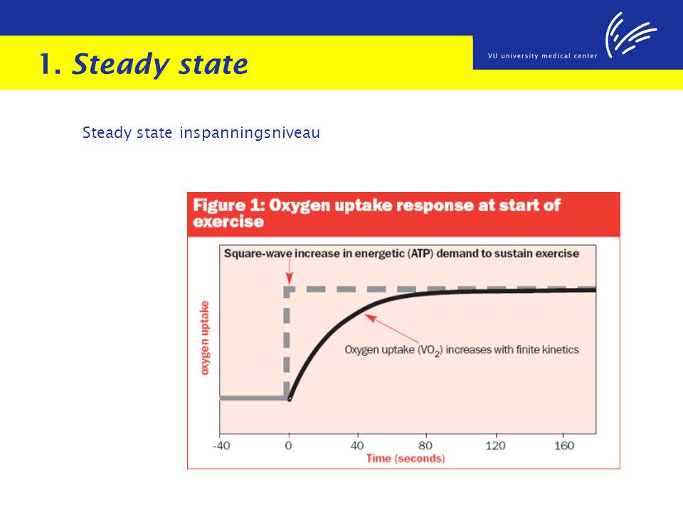 1. Steady state Steady state inspanningsniveau