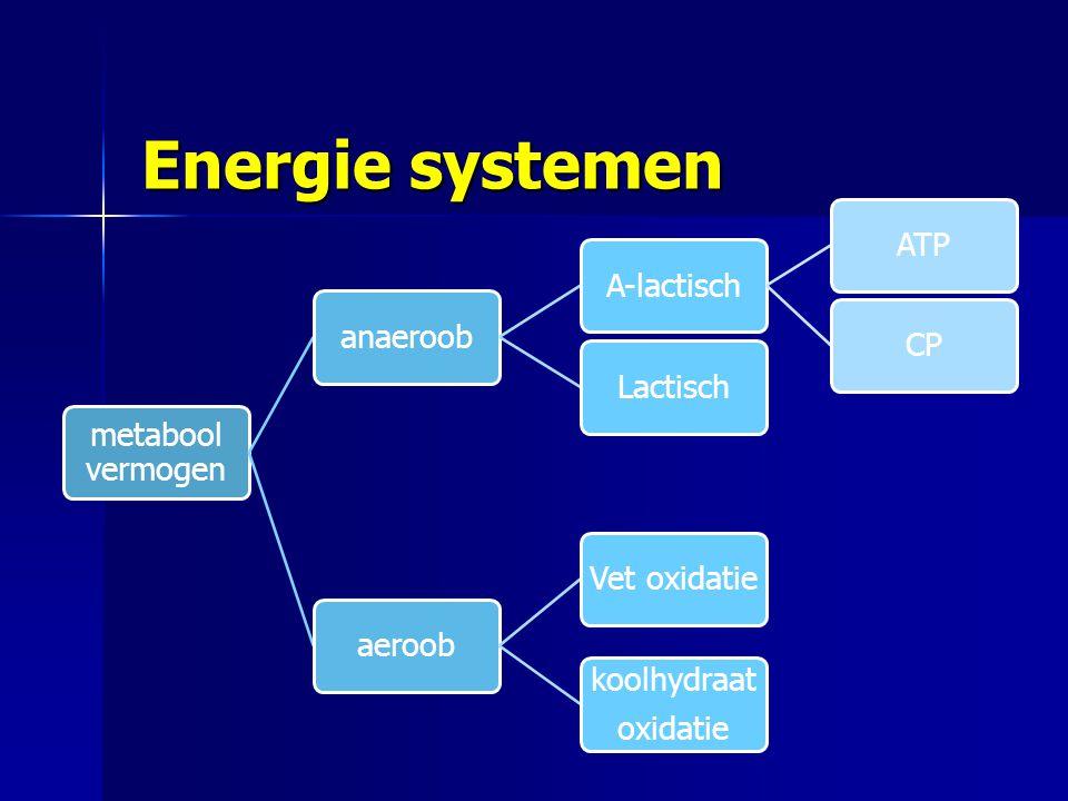 Energie systemen metabool vermogen aeroob Vet oxidatie koolhydraat oxidatie anaeroob Lactisch A-lactisch ATP CP