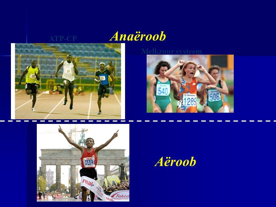 ATP-CP Zuurstof systeem Melkzuur systeem Anaëroob Aëroob
