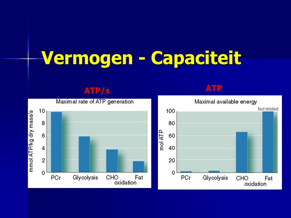 Vermogen - Capaciteit ATP/s ATP