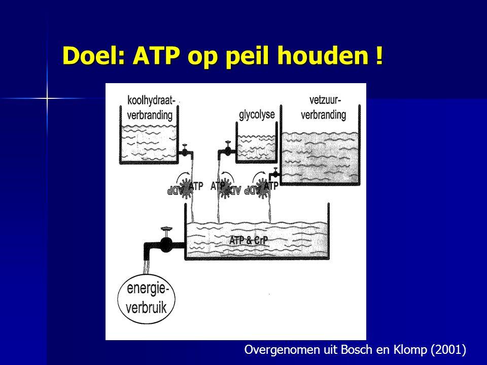 Doel: ATP op peil houden ! Overgenomen uit Bosch en Klomp (2001)
