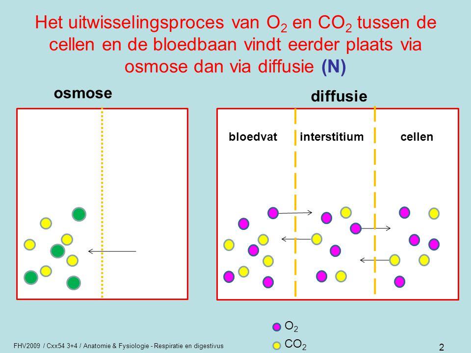 FHV2009 / Cxx54 3+4 / Anatomie & Fysiologie - Respiratie en digestivus 2 Het uitwisselingsproces van O 2 en CO 2 tussen de cellen en de bloedbaan vind
