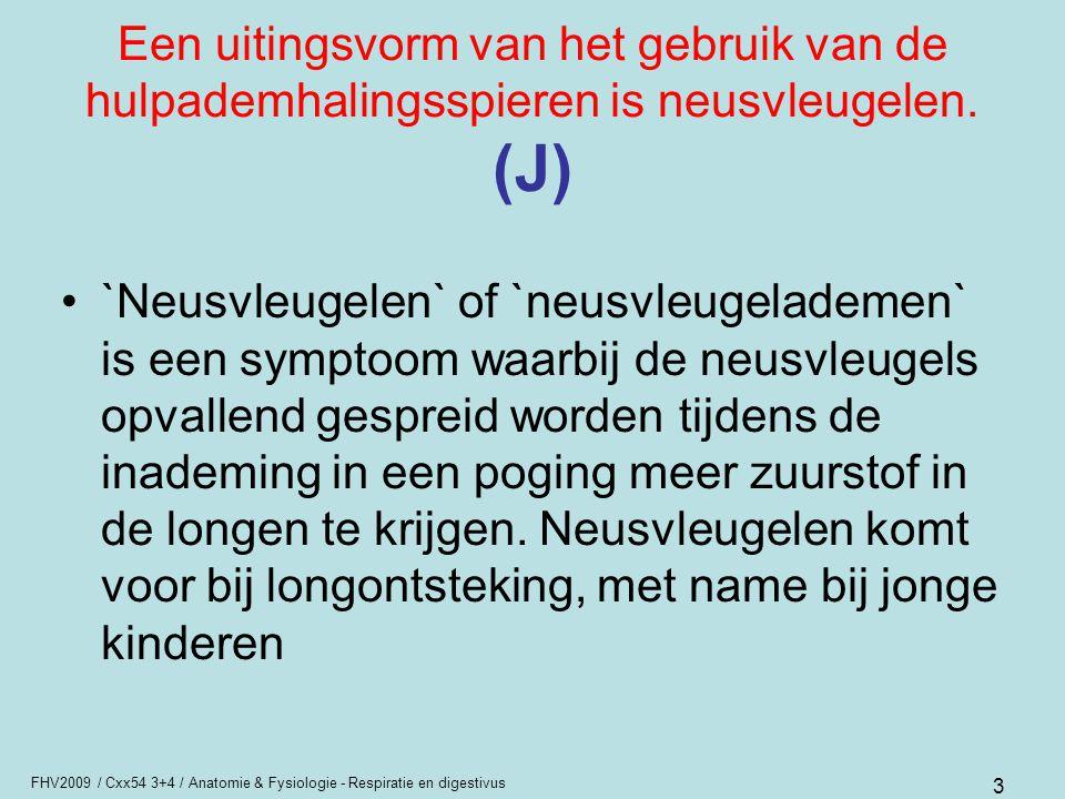 FHV2009 / Cxx54 3+4 / Anatomie & Fysiologie - Respiratie en digestivus 3 Een uitingsvorm van het gebruik van de hulpademhalingsspieren is neusvleugele