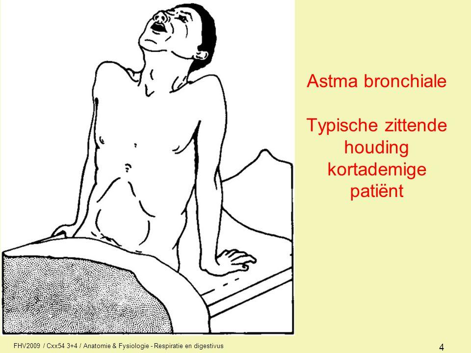 FHV2009 / Cxx54 3+4 / Anatomie & Fysiologie - Respiratie en digestivus 4 Astma bronchiale Typische zittende houding kortademige patiënt