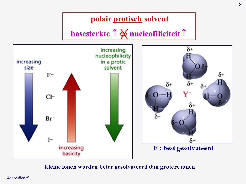 hoorcollege5 9 polair protisch solvent basesterkte   nucleofiliciteit  F - : best gesolvateerd kleine ionen worden beter gesolvateerd dan grotere i