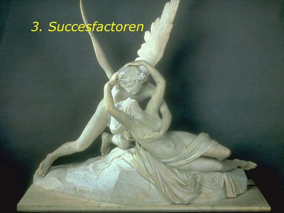 3. Succesfactoren