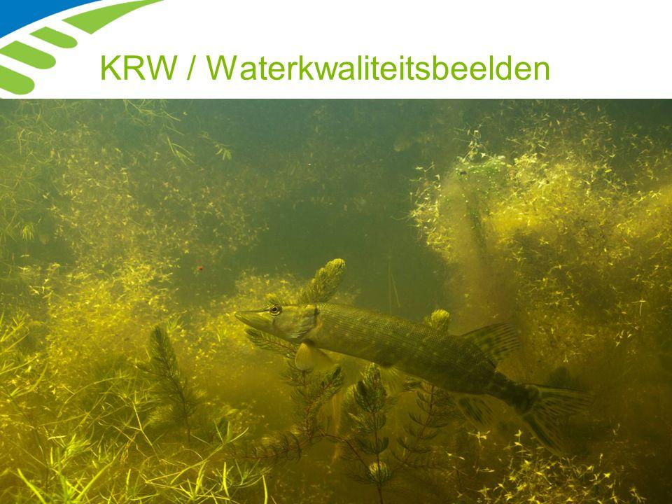 KRW / Waterkwaliteitsbeelden