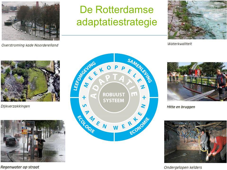 De Rotterdamse adaptatiestrategie