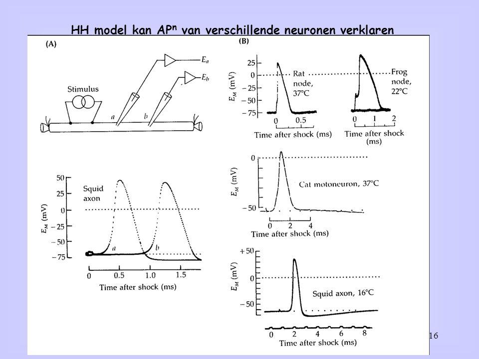 16 HH model kan AP n van verschillende neuronen verklaren