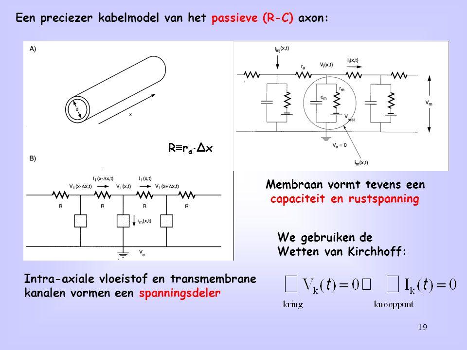 19 Een preciezer kabelmodel van het passieve (R-C) axon: Intra-axiale vloeistof en transmembrane kanalen vormen een spanningsdeler Membraan vormt tevens een capaciteit en rustspanning We gebruiken de Wetten van Kirchhoff: R ≡ r a ⋅ ∆x