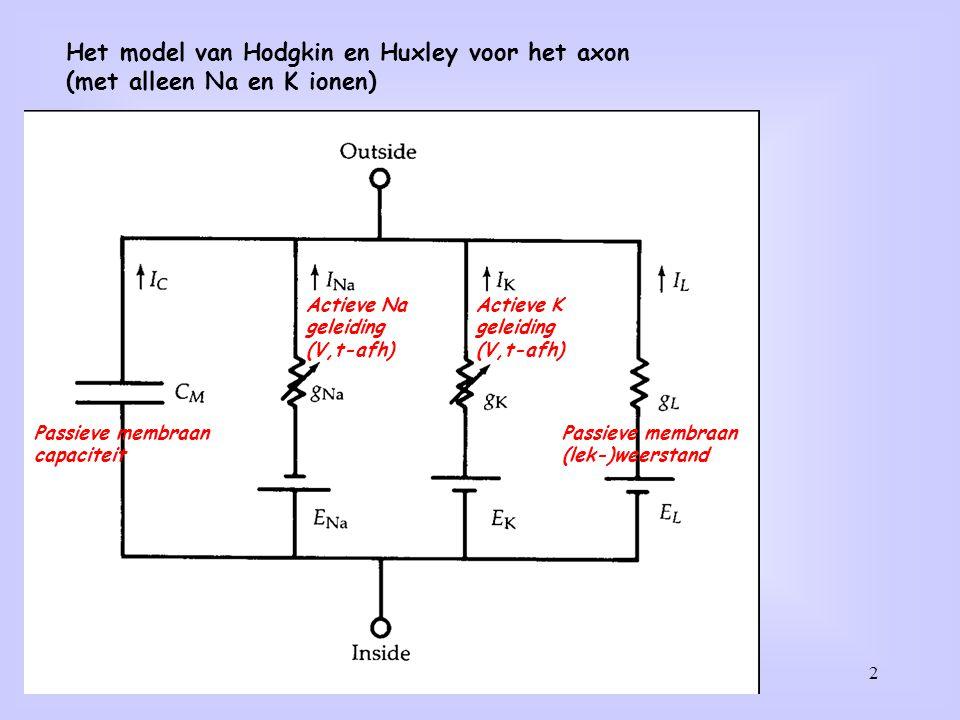 2 Het model van Hodgkin en Huxley voor het axon (met alleen Na en K ionen) Passieve membraan capaciteit Passieve membraan (lek-)weerstand Actieve Na geleiding (V,t-afh) Actieve K geleiding (V,t-afh)