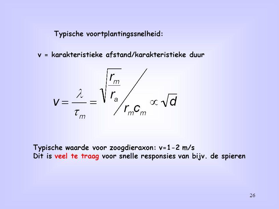 26 Typische voortplantingssnelheid: v = karakteristieke afstand/karakteristieke duur Typische waarde voor zoogdieraxon: v=1-2 m/s Dit is veel te traag
