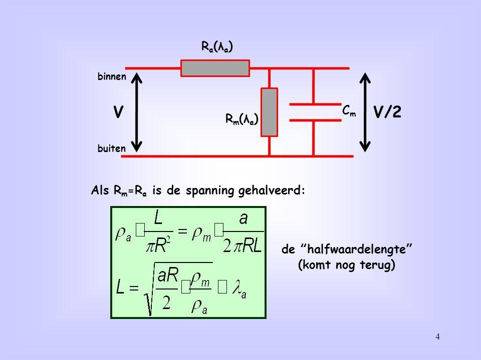 25 De actiepotentialen lopen beide richtingen op en ontstaan op karakteristieke afstanden van elkaar en tijdstippen ná elkaar: De AP wordt onvervormd doorgegeven, de amplitude blijft gelijk.