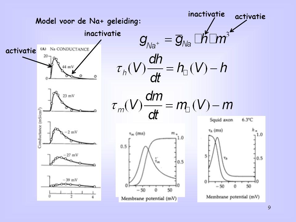 9 Model voor de Na+ geleiding: activatie inactivatie activatie
