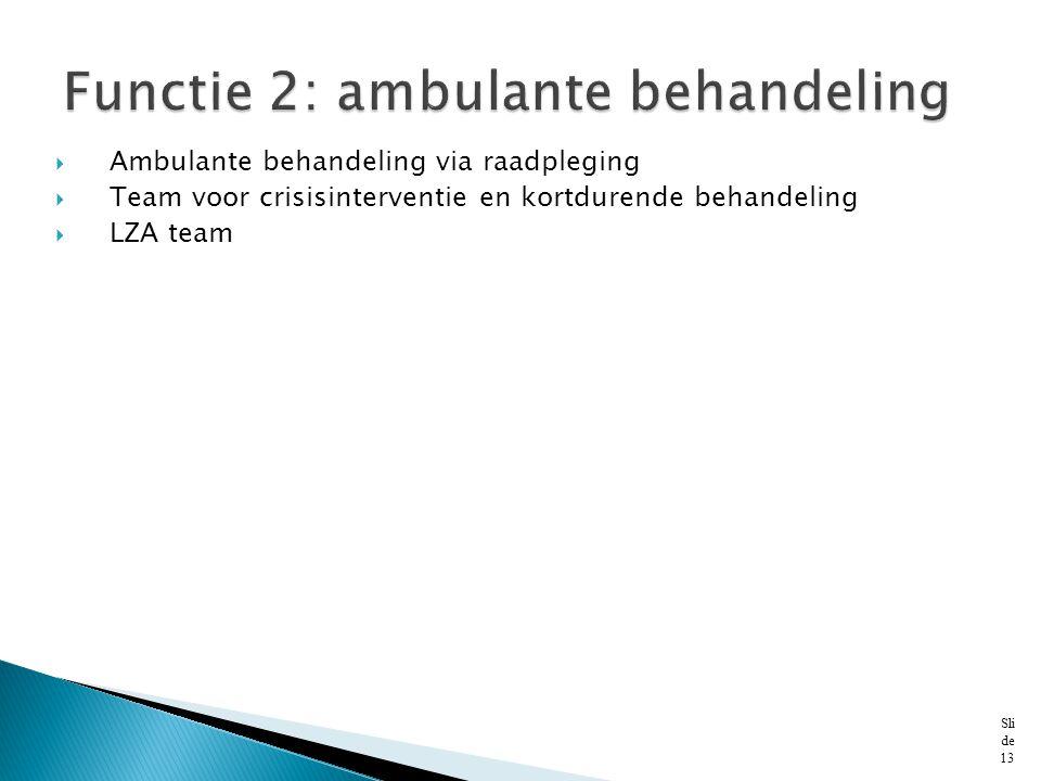  Ambulante behandeling via raadpleging  Team voor crisisinterventie en kortdurende behandeling  LZA team Sli de 13