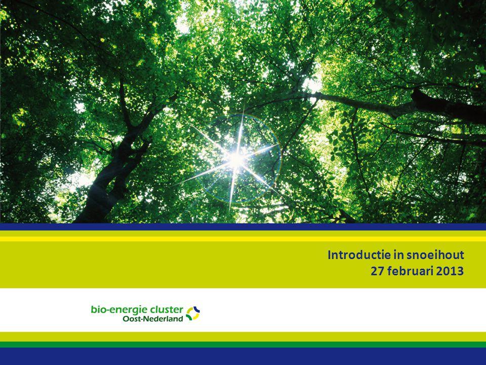 Introductie in snoeihout 27 februari 2013