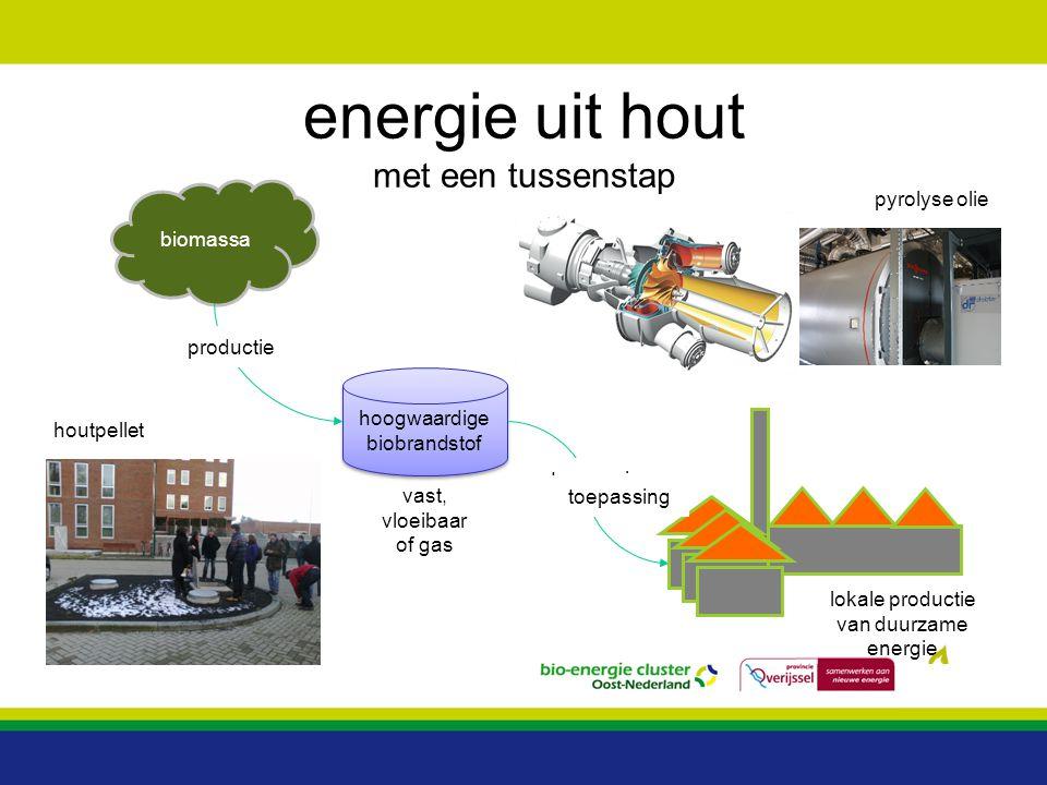energie uit hout met een tussenstap biomassa hoogwaardige biobrandstof hoogwaardige biobrandstof productie toepassing lokale productie van duurzame en