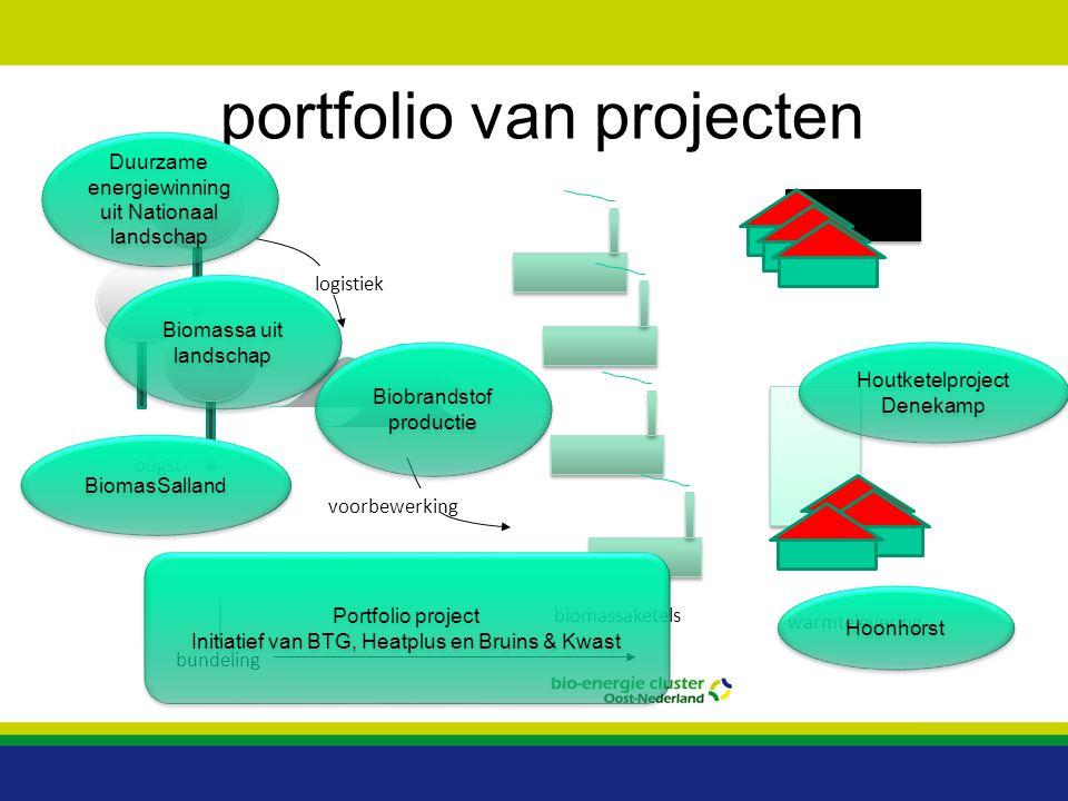 biomassaketels warmtelevering oogst logistiek voorbewerking bundeling portfolio van projecten Biobrandstof productie Hoonhorst Houtketelproject Deneka