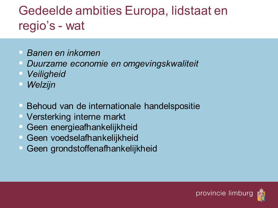 Gedeelde ambities Europa, lidstaat en regio's - wat  Banen en inkomen  Duurzame economie en omgevingskwaliteit  Veiligheid  Welzijn  Behoud van d