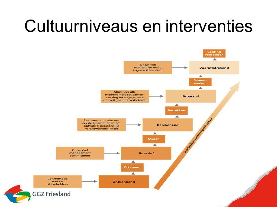 Cultuurniveaus en interventies