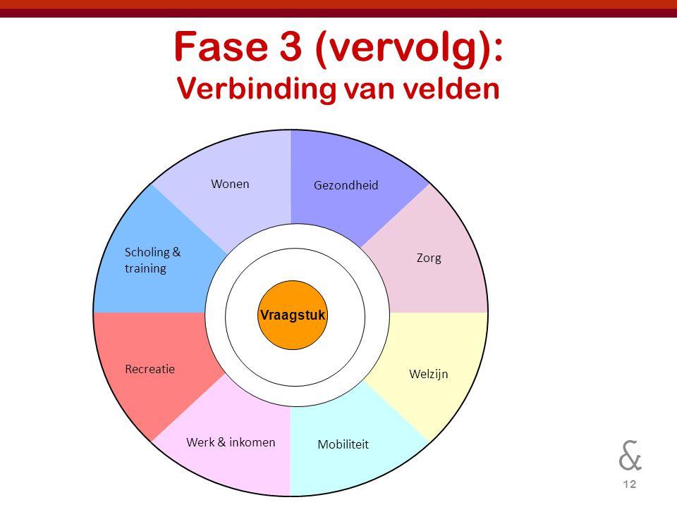 12 Fase 3 (vervolg): Verbinding van velden Gezondheid Vraagstuk Zorg Welzijn Mobiliteit Werk & inkomen Recreatie Scholing & training Wonen
