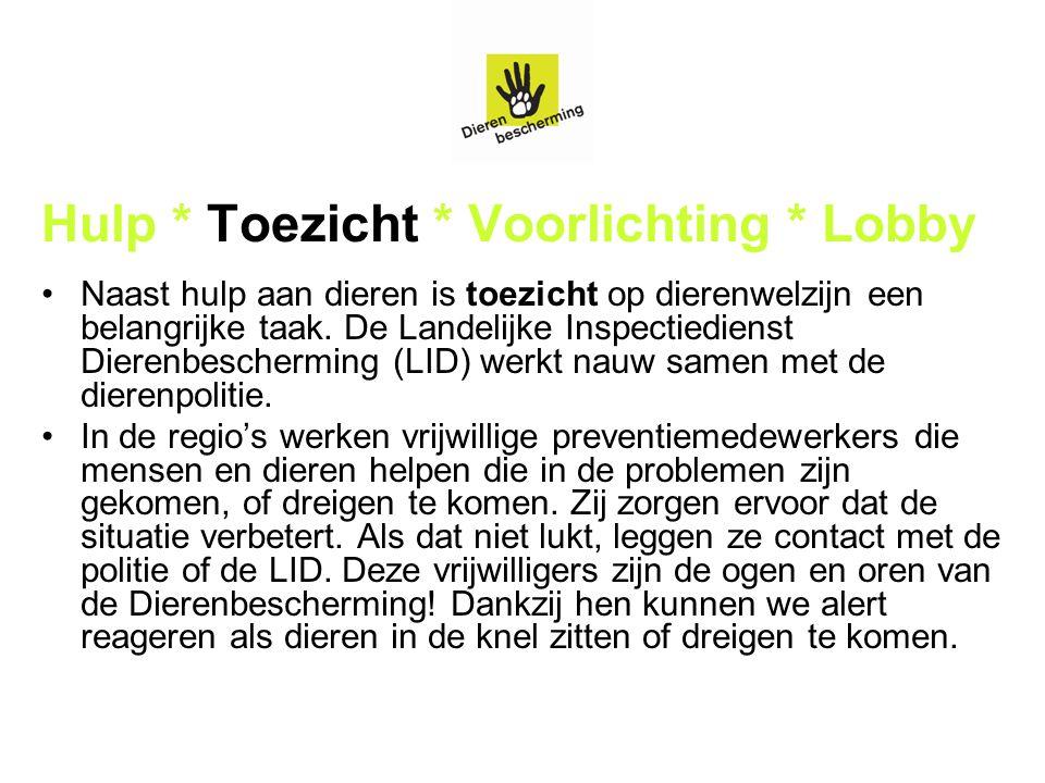 Hulp * Toezicht * Voorlichting * Lobby Naast hulp aan dieren is toezicht op dierenwelzijn een belangrijke taak. De Landelijke Inspectiedienst Dierenbe