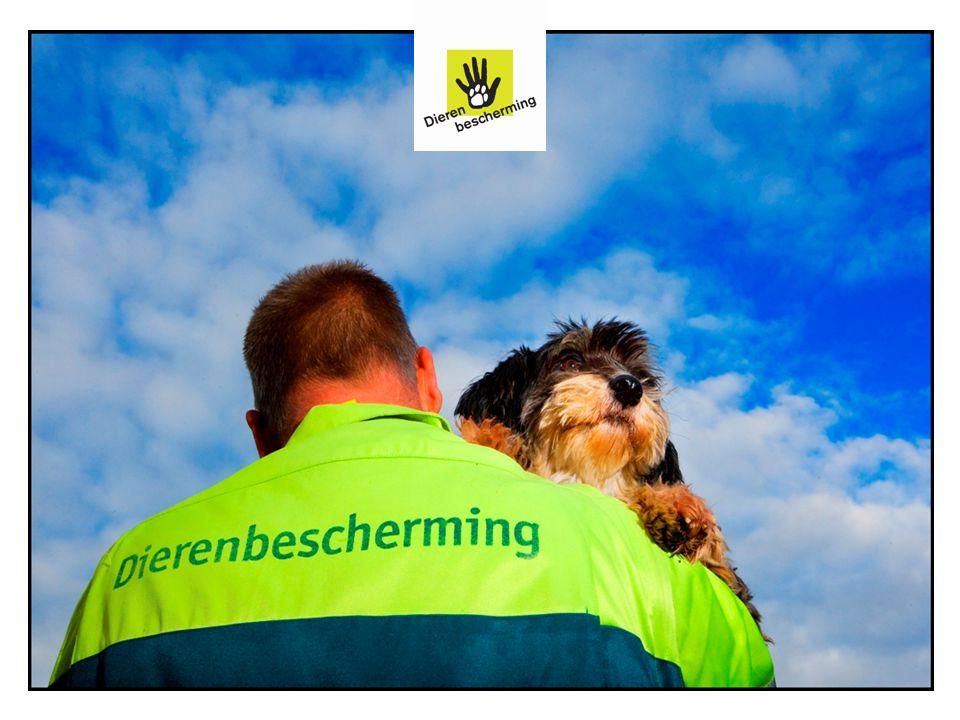 Doelgroepen Dierenbescherming Doelgroepen Publiek Overheid en politiek Bedrijfsleven (gehele keten) Wetenschap Maatschappelijke organisaties Plaats Lokaal, nationaal en internationaal (EU-27) Lid van Eurogroup for Animals 13