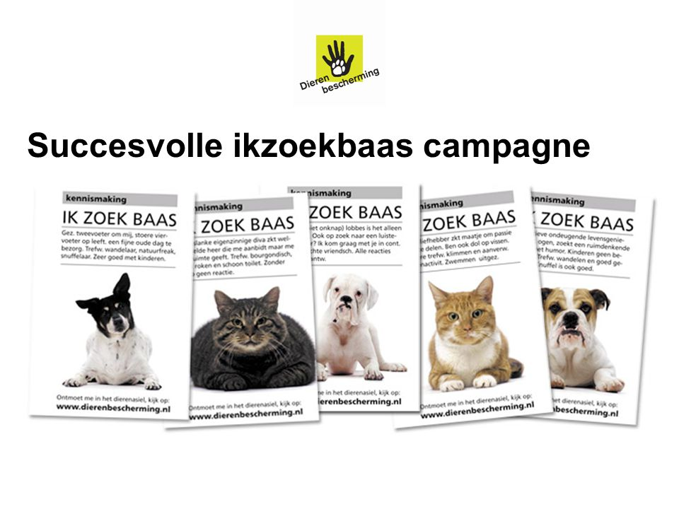 Succesvolle ikzoekbaas campagne