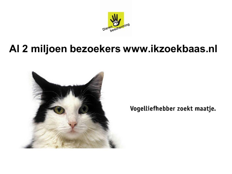 Al 2 miljoen bezoekers www.ikzoekbaas.nl