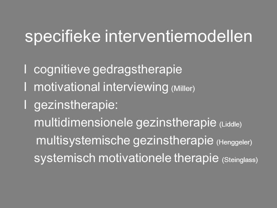 pijlers behandeling I teamwerking I jongeren - leefgroepwerk/therapieën I gezin - gezinstherapie/oudervergaderingen I school - motiveren/remediëren/he