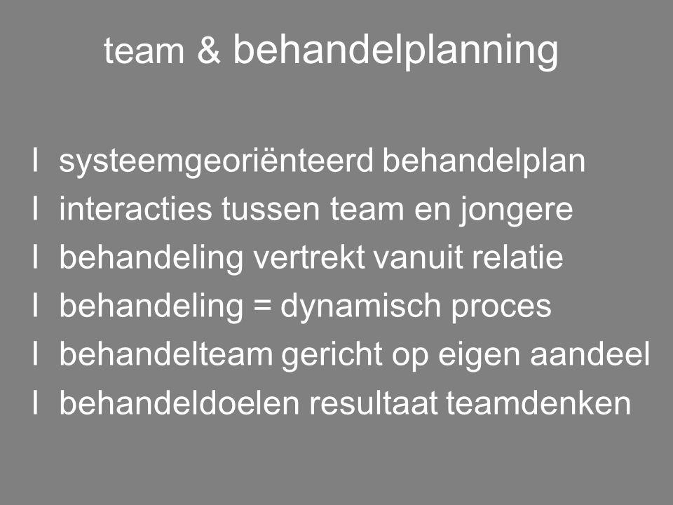 teamwerking I visie + geïntegreerd behandelplan I werkbegeleiding/intervisie verpleging I samenwerking en stabiliteit I team = ondersteunend netwerk I