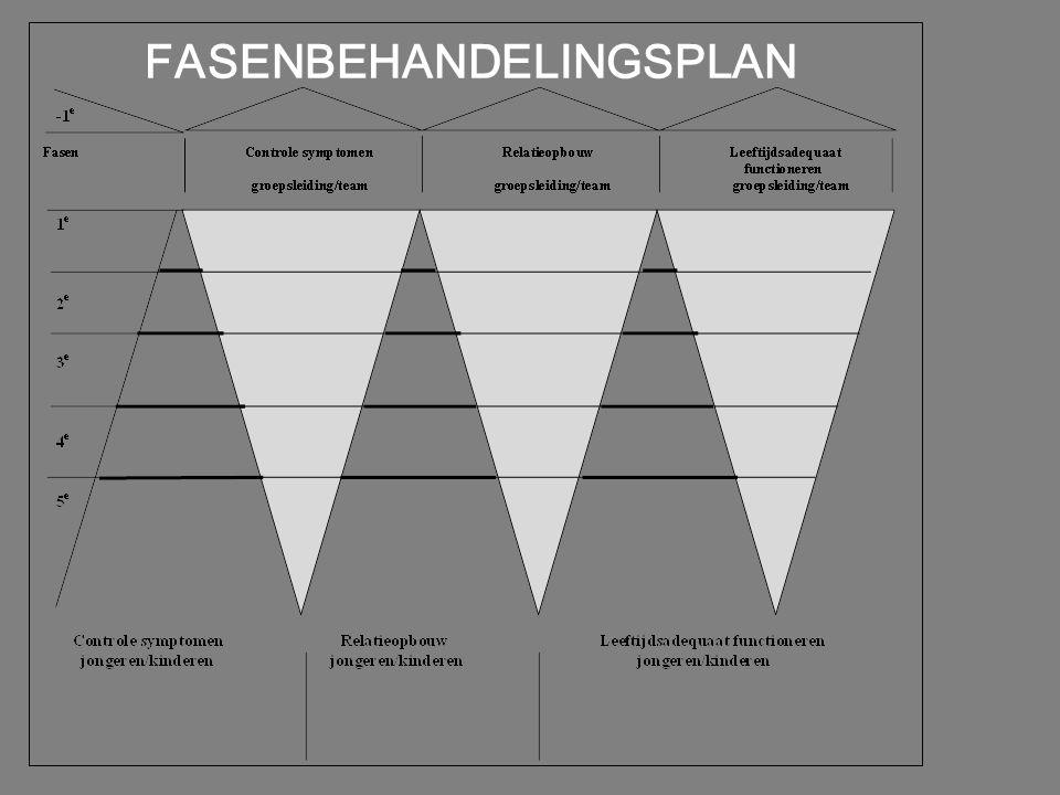 team & behandelplanning I systeemgeoriënteerd behandelplan I interacties tussen team en jongere I behandeling vertrekt vanuit relatie I behandeling =