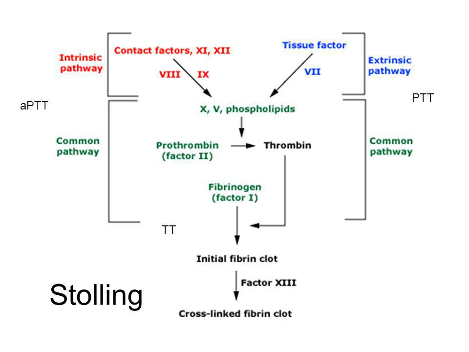 Stolling aPTT PTT TT