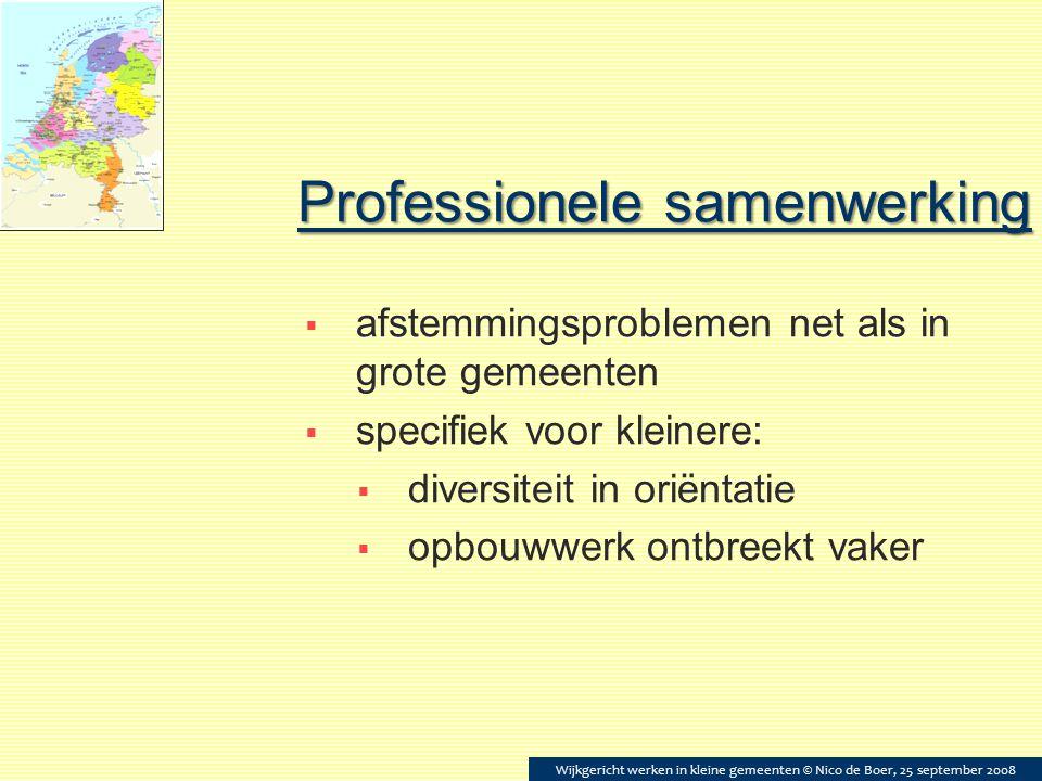 Professionele samenwerking  afstemmingsproblemen net als in grote gemeenten  specifiek voor kleinere:  diversiteit in oriëntatie  opbouwwerk ontbr
