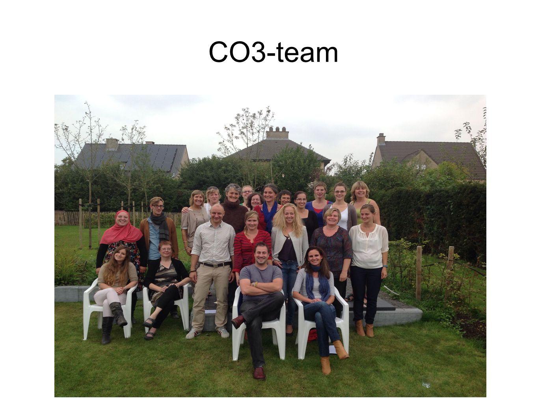 CO3-team