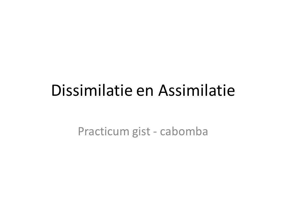 Dissimilatie en Assimilatie Practicum gist - cabomba