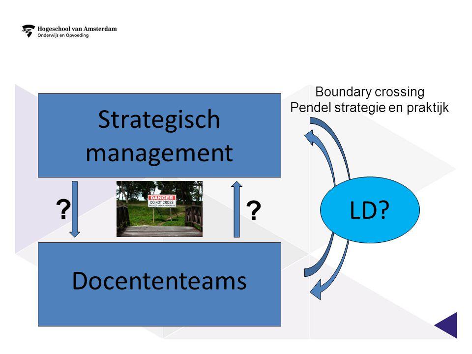 Docententeams Strategisch management ? ? LD? Boundary crossing Pendel strategie en praktijk