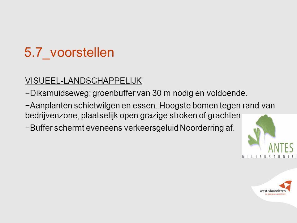 21 5.7_voorstellen VISUEEL-LANDSCHAPPELIJK −Diksmuidseweg: groenbuffer van 30 m nodig en voldoende.