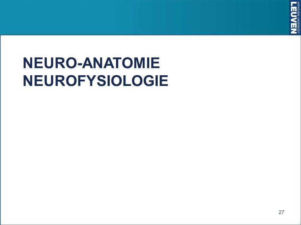 NEURO-ANATOMIE NEUROFYSIOLOGIE 27