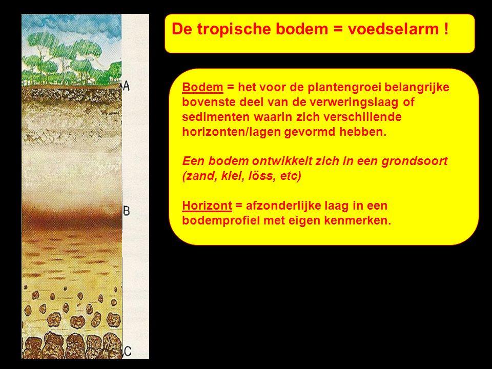 De tropische bodem = voedselarm .